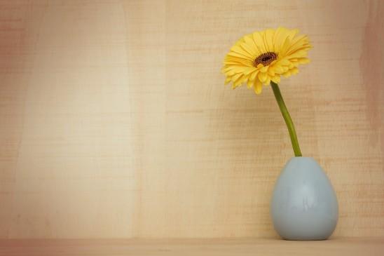 www fotomelia com images gratuites