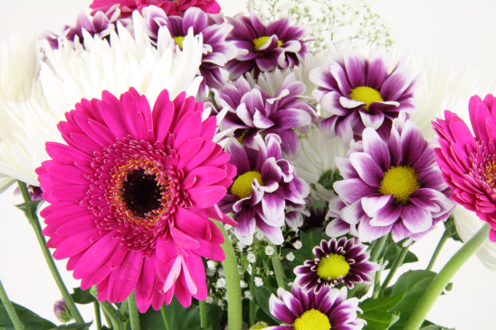 bouquet de fleur rose blanche violette