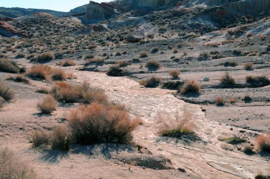 désert sec aride sécheresse