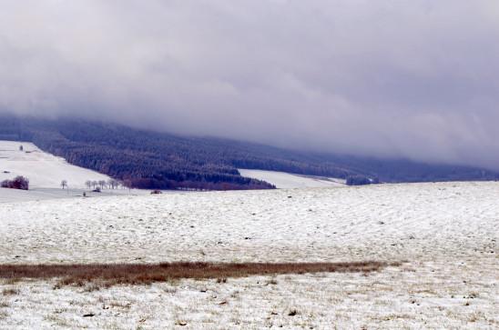 paysage hiver naige prairire pré enneigé