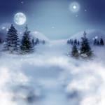 paysage hiver neige sapin étoile