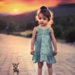 enfant petite fille bébé et un petit lionceau sur la route images photos gratuites