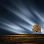 fabuleux paysage fantastique nature crépuscule images photos gratuites