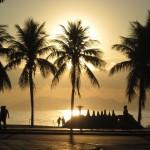 paysage gens palmiers lever du soleil images photos gratuites
