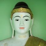 portrait bouddha bouddhisme zen attitude