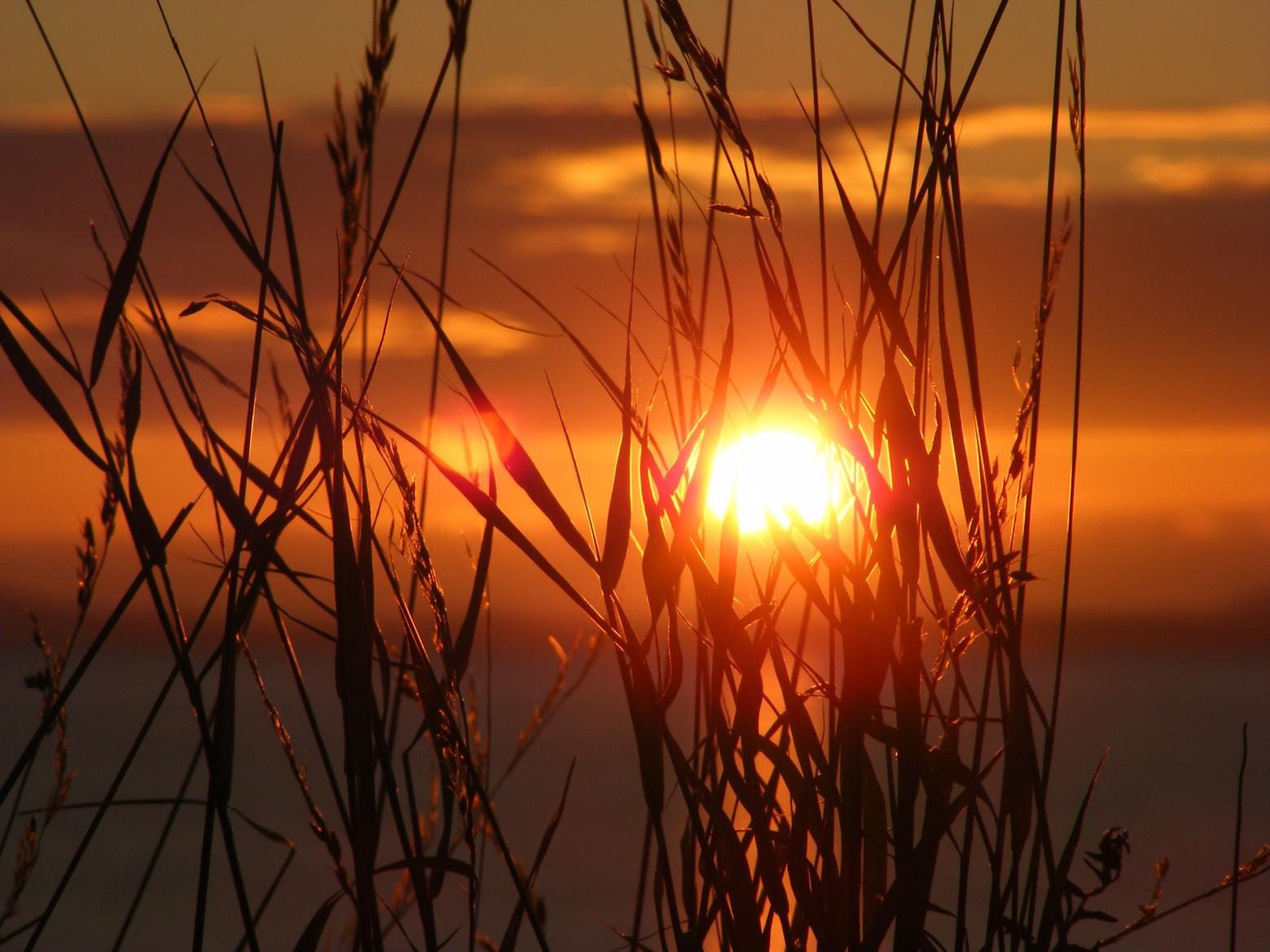 Pi de bl sunset coucher de soleil images photos - Les bronzes bonsoir nous allons nous coucher ...