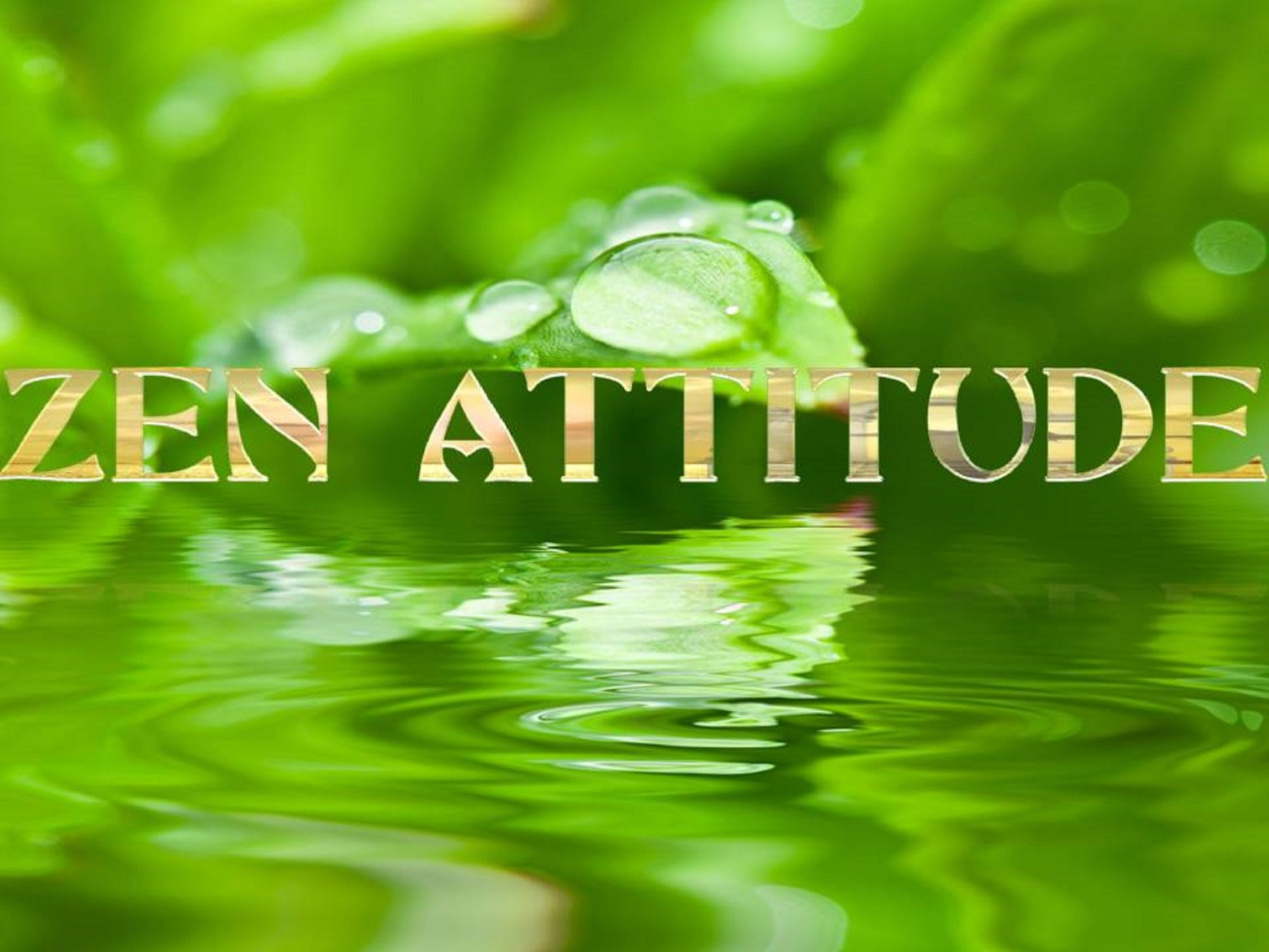 Zen attitude backround fond arri re plan images for Fond ecran gratuit zen