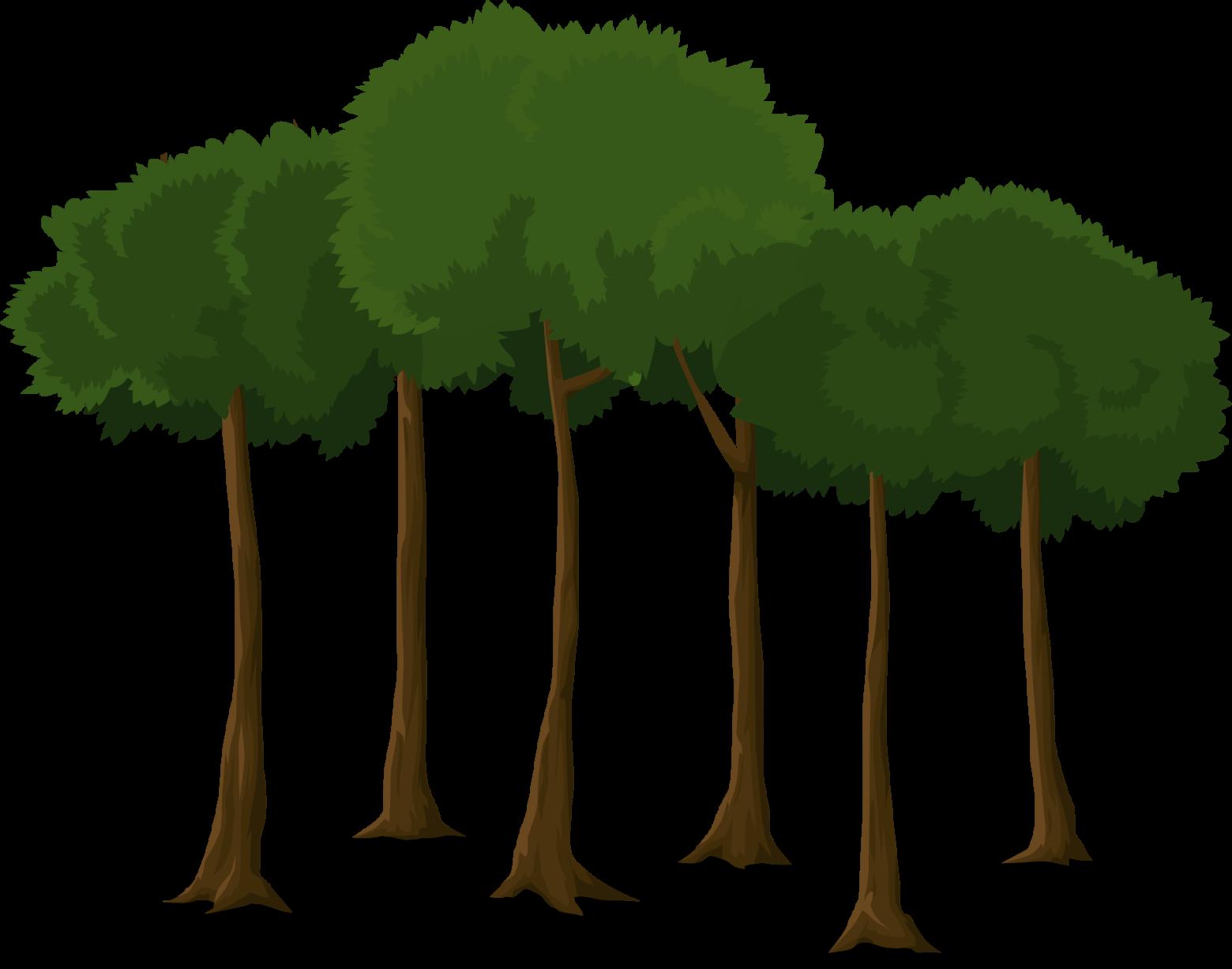 Préférence clipart arbre forêt sur fond blanc images gratuites | images  RF15