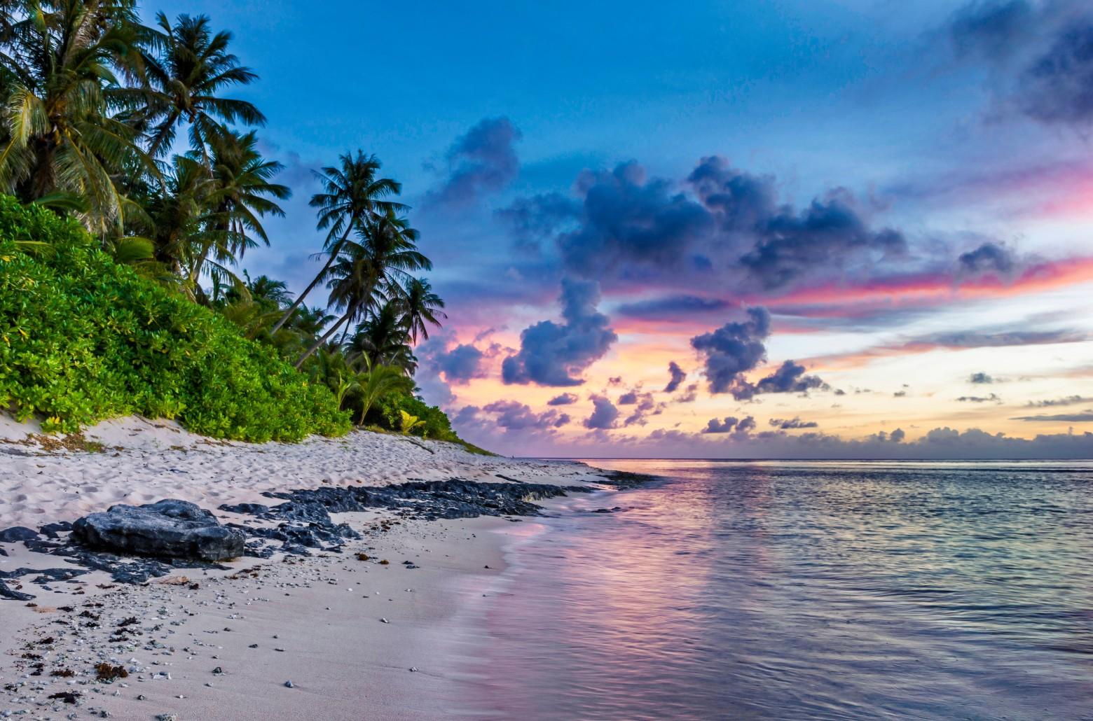 beau paysage le tropicale mer palmier photos gratuites images gratuites et libres de droits. Black Bedroom Furniture Sets. Home Design Ideas
