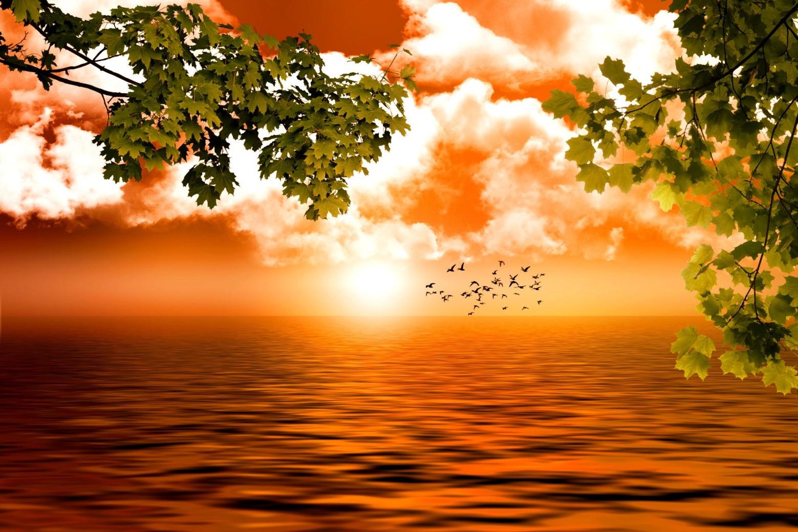 Beau fond d cran images gratuites images gratuites et for Images gratuites fond ecran mer