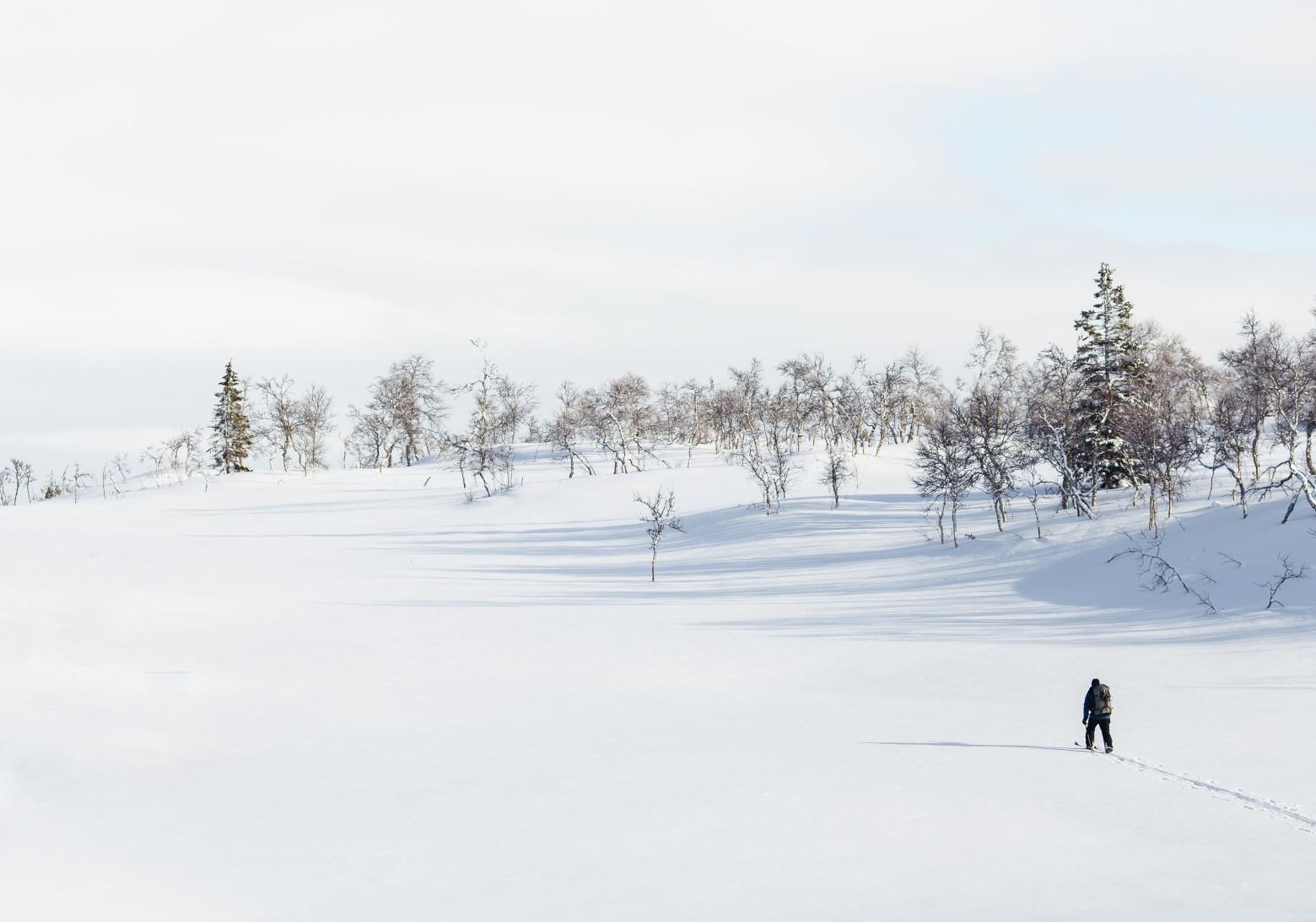 La neige photos gratuites images gratuites et libres de - Photos de neige gratuites ...