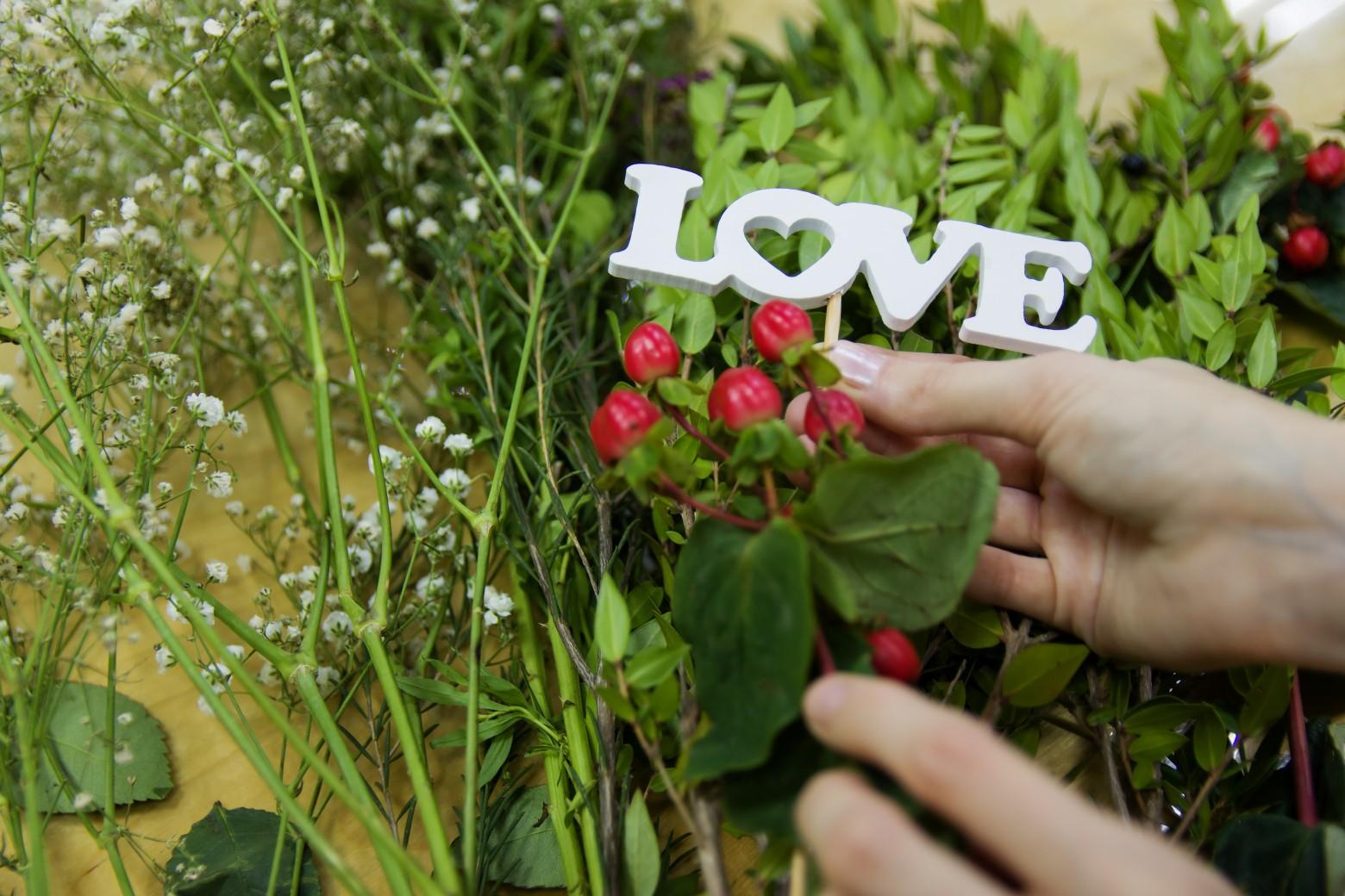 www fotomelia com
