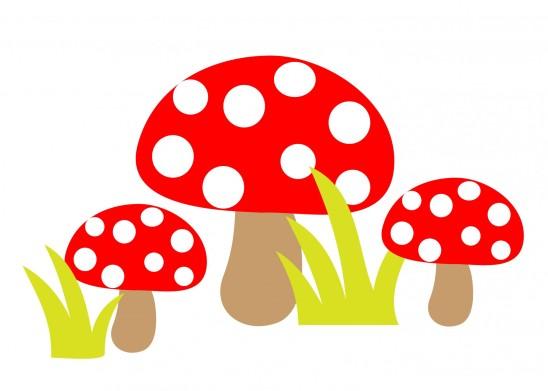 champignon rouge vénéneux