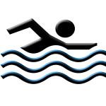natation vecteur illustration nageur