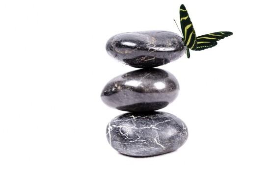 pierre zen papillon