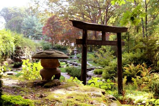 zen jardin japonais chinois