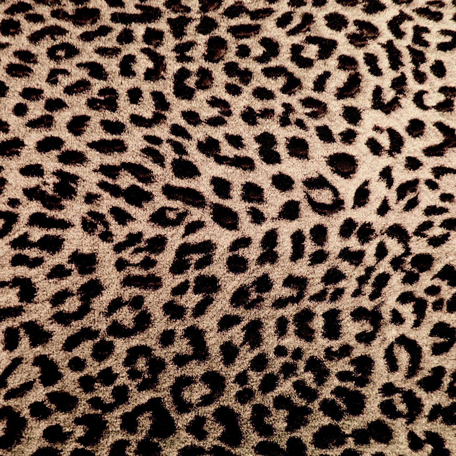 texture l opard motif images gratuites et libres de droits. Black Bedroom Furniture Sets. Home Design Ideas