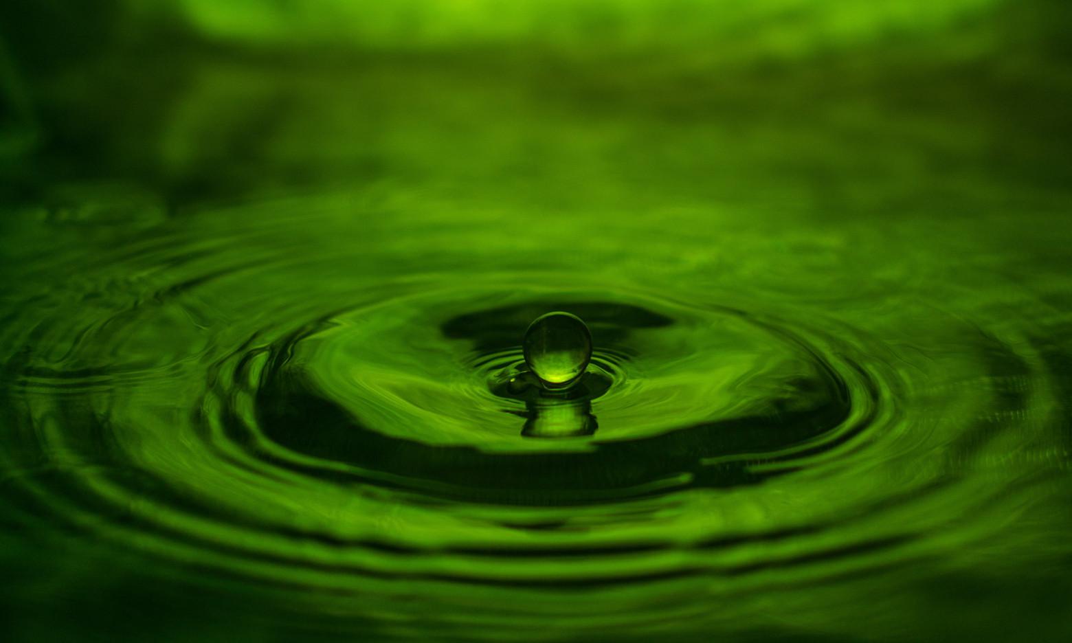 Goutte D Eau Fond Vert Feuille Nature Images Gratuites Et
