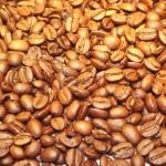 café graine de café images photos gratuites