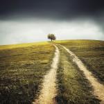 chemin route de campagne images photos gratuites