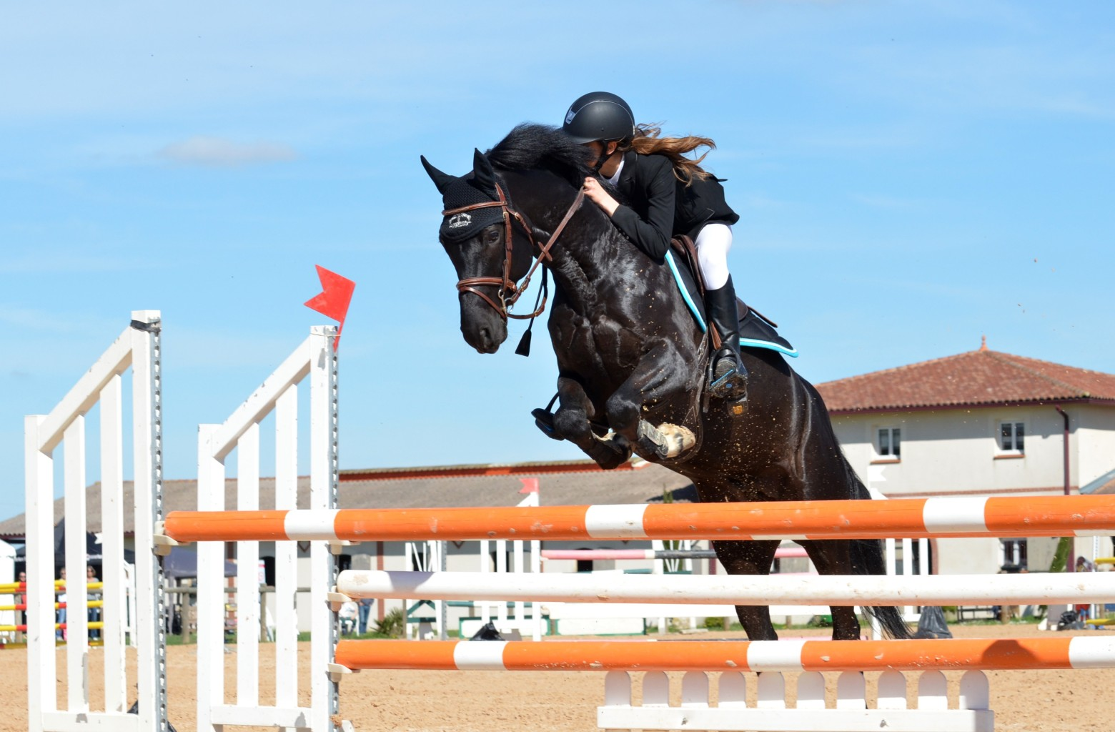 Cheval cavali re saut d 39 obstacle quitation images photos - Frison saut d obstacle ...