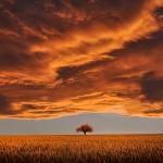 fabuleux paysage fantastique nature crépuscule images photos gratuites4
