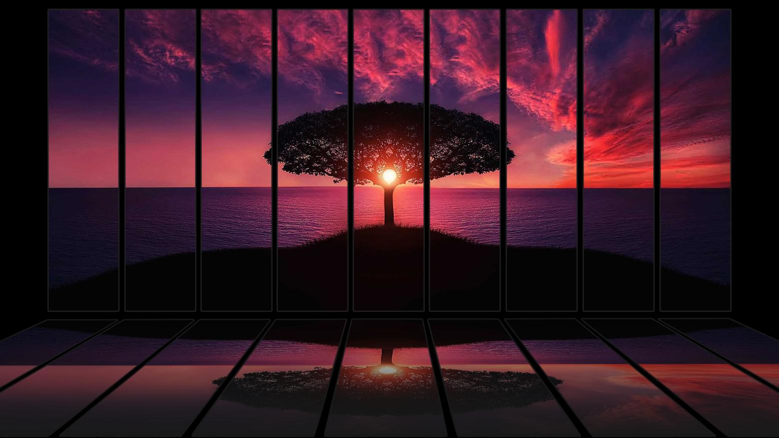 Fond D Eran Hd Wallpaper Paysage Coucher De Soleil Sunset