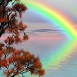 magnifique paysage nature eau rivière et un arc en ciel images photos gratuites