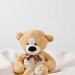 peluche nounours teddy images photos gratuites libres de droits