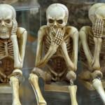 squelette humain images photos gratuites