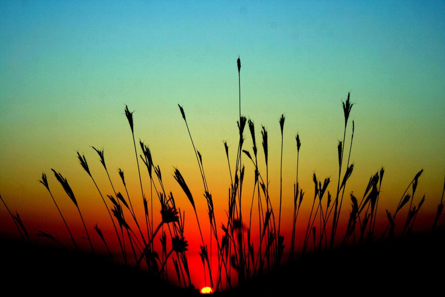 Sunset Paysage Coucher De Soleil Fond D Ecran Image Hd