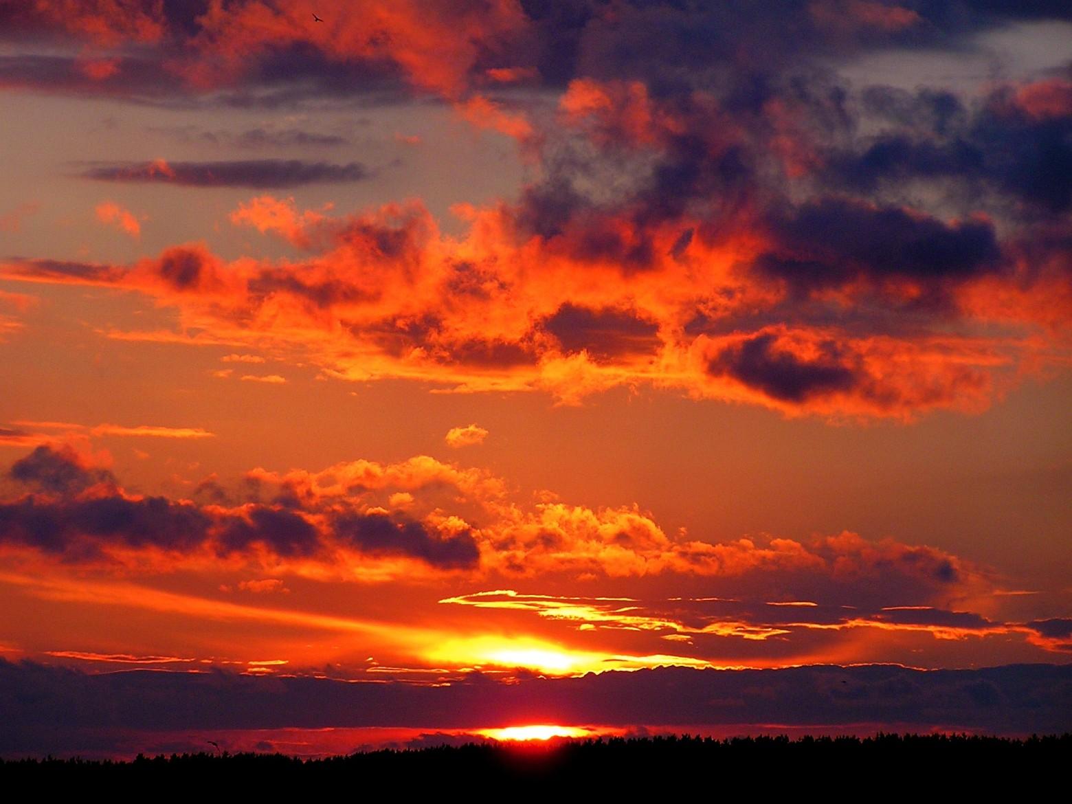 Les Plus Beaux Coucher De Soleil Fond D Ecran Images Gratuites Images Gratuites Et Libres De Droits