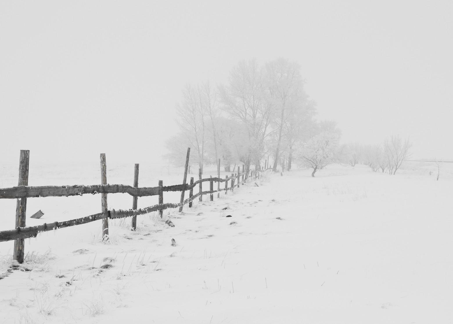 Photos gratuites de paysage l 39 hiver la neige campagne - Photos de neige gratuites ...