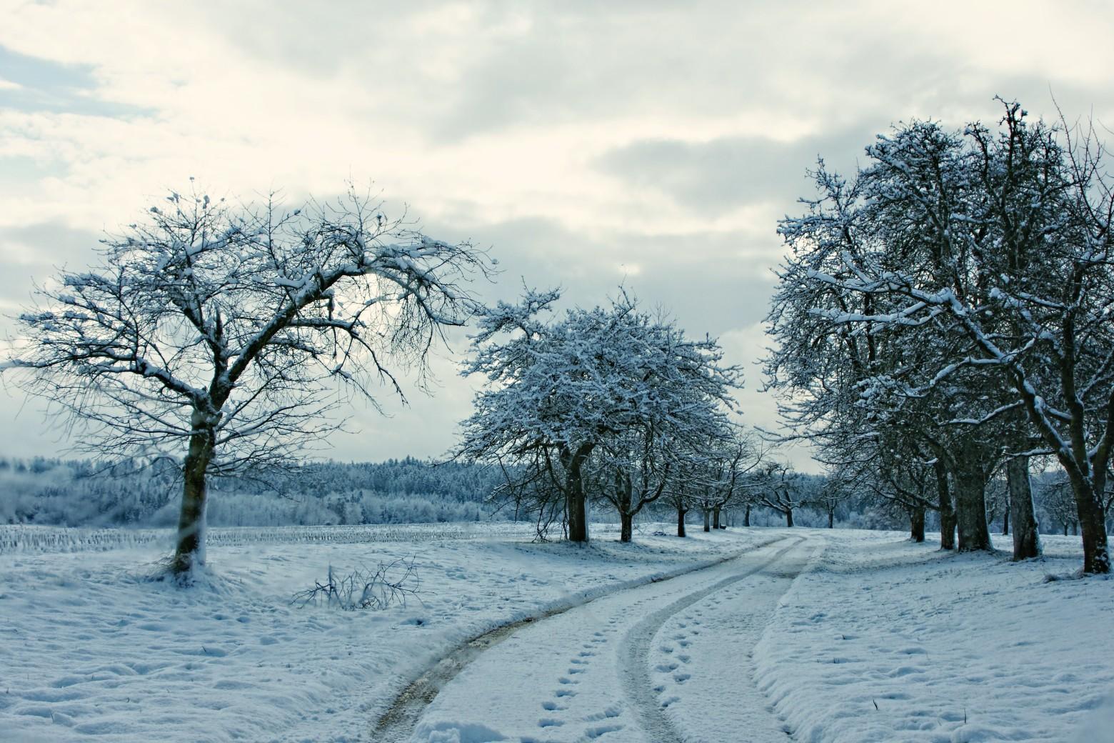 Paysage de neige images gratuites et libres de droits - Photos de neige gratuites ...